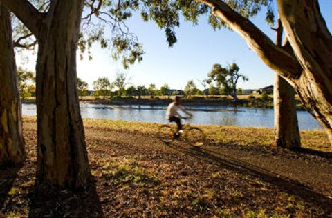 Wimmera River cyclist.jpg